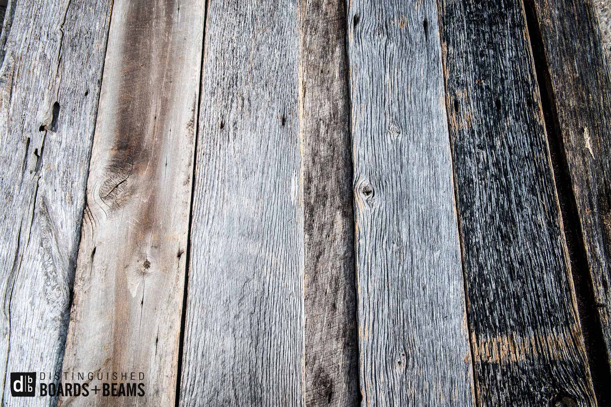 Common Species Found In Reclaimed Wood